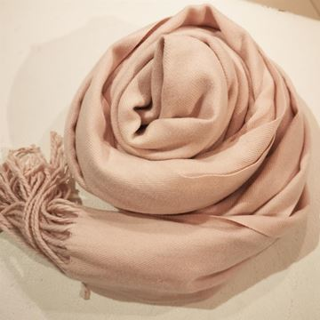 cashmir-lys-rosa