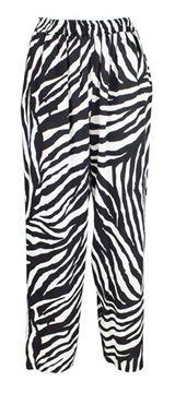 zebra-sorthvit